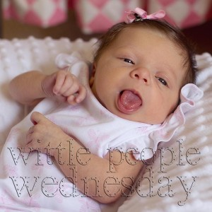 wittle people wednesday button