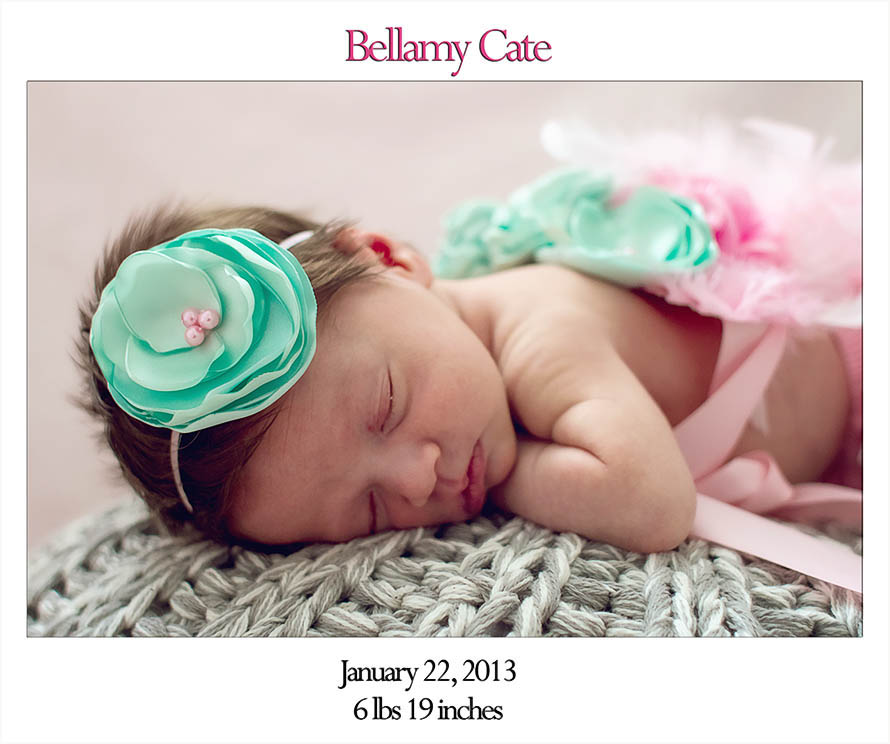 Welcome Bellamy Blog