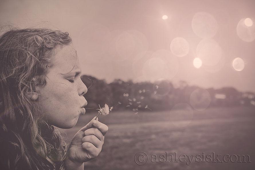 Blowing dandelions RS