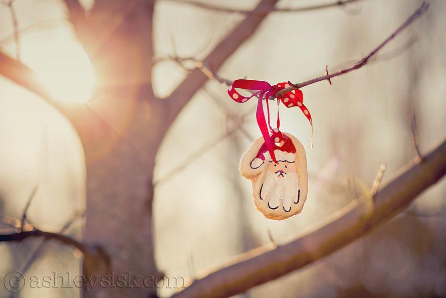 tree ornament RS