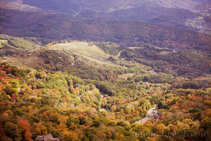 Fall Foliage RS